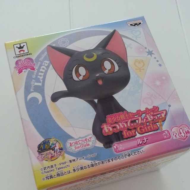I adopted a sassy black cat yesterday. #sailormoon #luna