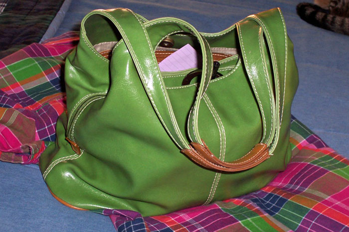 Green Purse and Pink Plaid